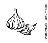 vector illustration of garlic...   Shutterstock .eps vector #1869746881