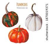 three handpainted orange and... | Shutterstock . vector #1870019371