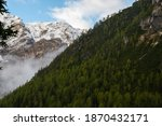 The Seekofel mointain coverd by snow with a mountain with the forest in front of it.