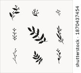 winter plants and botanical... | Shutterstock .eps vector #1870437454
