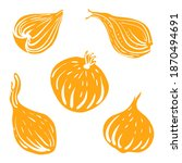 onion. colorful sketch of... | Shutterstock .eps vector #1870494691