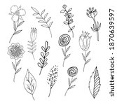 collection of wild meadow...   Shutterstock .eps vector #1870639597
