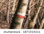 White And Red Sign On Tree In...