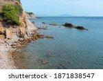 rocky coastline  ceder trees ... | Shutterstock . vector #1871838547