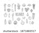 set of vegetable icons onion ... | Shutterstock .eps vector #1871883517