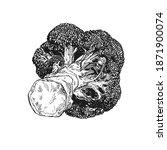 hand drawn illustration of... | Shutterstock .eps vector #1871900074