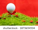 Golf Ball Is On Green Grass...