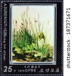 "Small photo of NORTH KOREA - CIRCA 1979: A stamp printed in North Korea from the ""450th death anniversary (1978) of Albrecht Durer "" 1st issue shows A Big Tuft of Grass, circa 1979."