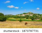 Summer Landscape With View On...