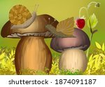 Two Snail On The Mushroom...