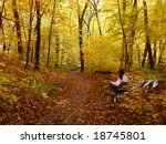 woman on the bench in the... | Shutterstock . vector #18745801