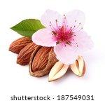 almonds kernel with flower | Shutterstock . vector #187549031