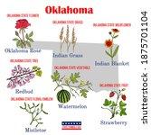 Oklahoma. Set Of Usa Official...
