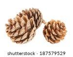 Three Pine Cones Close Up