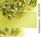 Olives On Olive Tree In Autumn.