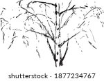 birch tree  graphic background. ...   Shutterstock .eps vector #1877234767