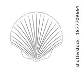clam beach outline vector...   Shutterstock .eps vector #1877709664