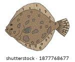 fish turbot hand drawn.... | Shutterstock .eps vector #1877768677
