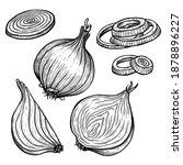 vector sketch illustration of... | Shutterstock .eps vector #1878896227
