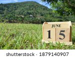 June 15  Country Background For ...