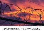 Barbed Wire Against The Sky...