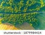 golden fields of wheat aerial... | Shutterstock . vector #1879984414