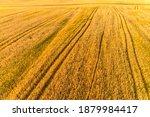 golden fields of wheat aerial... | Shutterstock . vector #1879984417