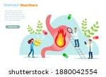 doctors diagnosis patient... | Shutterstock .eps vector #1880042554