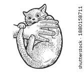 cat bites hand sketch engraving ... | Shutterstock .eps vector #1880158711