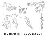 leaves and twigs hand drawn... | Shutterstock .eps vector #1880165104