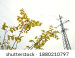 An Electricity Transmission...