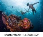 couple snorkeling over vivid... | Shutterstock . vector #188031869