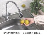 Citrus Fruits Are Washed In The ...