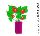 anthurium  potted flower ...   Shutterstock .eps vector #1880563387
