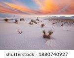 Unusual White Sand Dunes At...