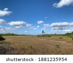 A View Of Grass And Wetlands In ...