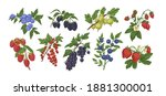 collection or colorful detailed ... | Shutterstock .eps vector #1881300001