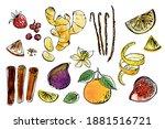 fruits  berries  spices. vector ... | Shutterstock .eps vector #1881516721