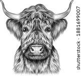 The Bull's Head Animal Vector...