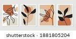 botanical wall art vector set.... | Shutterstock .eps vector #1881805204