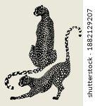 vector hand drawn minimalistic... | Shutterstock .eps vector #1882129207