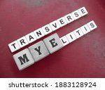 Small photo of Transverse Myelitis, word cube with background.