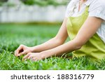 gardening. cropped image of... | Shutterstock . vector #188316779