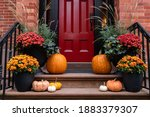 Colorful Pumpkins And Flowers...