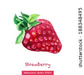 Watercolor Strawberry Isolated...