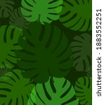 tropical leaves. palm and... | Shutterstock .eps vector #1883552251
