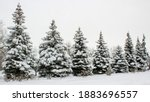 winter landscape with snow... | Shutterstock . vector #1883696557