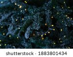 christmas winter tree with... | Shutterstock . vector #1883801434
