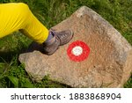 Woman Hiking Boot On A Stone...