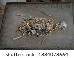 Remaining Human Bone After The...